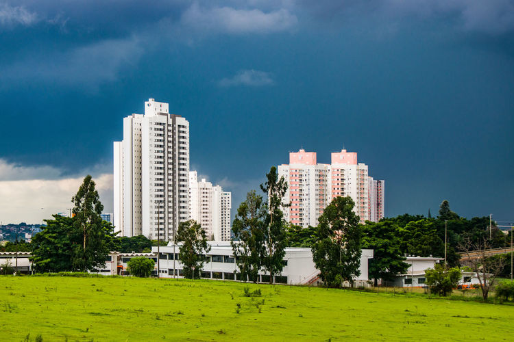 Trees and buildings against sky