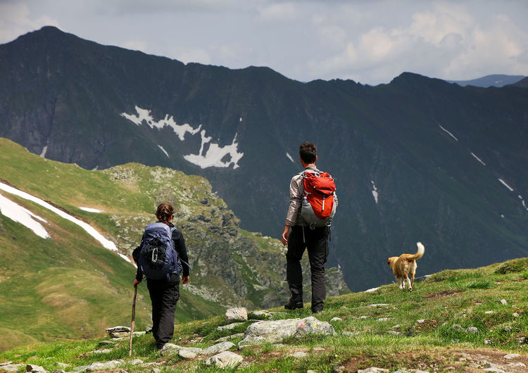 Rear view of hikers with dog standing on mountain