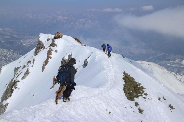 Rear View Of Hikers Climbing On Snowcapped Mountain