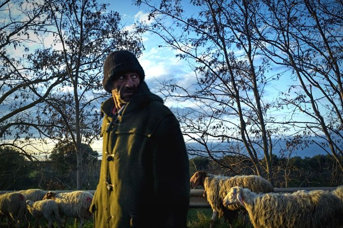 Colors Color Portrait Portrait Nature Sheep Shepherd Southitaly Notes From The Underground Streetphotography Streetphoto_color
