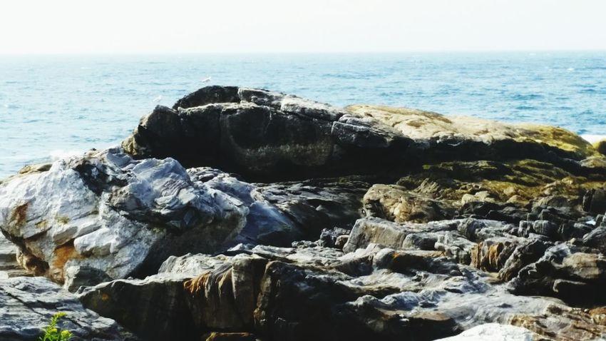 Low Tide Maine al Alantic Ocean Pemaquid Point, Maine Taking Photos Enjoying Life Mainephotography Blue Sky Large Rocks