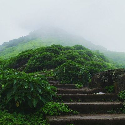 Steps Climbing Trekking Mountains clouds fog rain nature beautiful anjanery nasik nashik deolali devlali maharashtra india @narendramodi @maharashtra_ig journey sunset