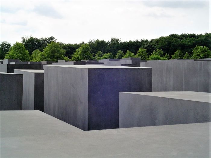 Architecture Capture Berlin Cloud - Sky Concrete Blocks Day Forest Growth Holocaust Mahnmal Holocaust Memorial Nature No People Outdoors Sky Tree