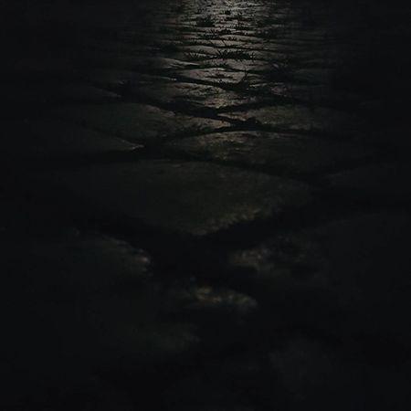 """Moonstones"" Moon Moonlight Way Pavement Road Bricks Brickstones Lights Gray White Black Urban Night Grass Weed Straw Photo Photography No Filter Belanglose Bilder Unaffected Images"