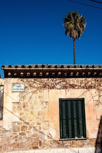 Mallorca House SPAIN Mallorca Balearic Islands Spanish Village Building Exterior Built Structure Architecture Sky Plant Clear Sky Nature Building Blue No People Window Tree Outdoors Wall