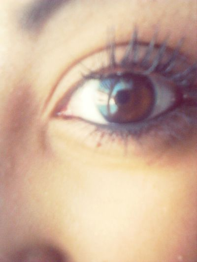 Brown Eyes. that's my eye(:
