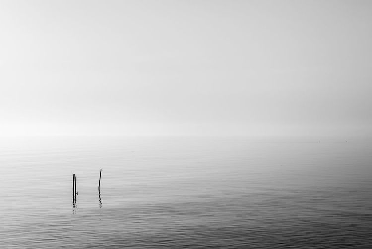Misty view of lake Garda Beauty In Nature Black Black And White Blackandwhite Calm Day Garda Lake Mist Misty Nature No People Outdoors Quiet Scenics Simple Soft Sticks Tranquil Scene Tranquility Water Waterfront White