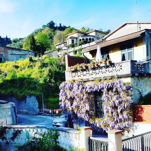 View from my bedroom balcony :) Carrara