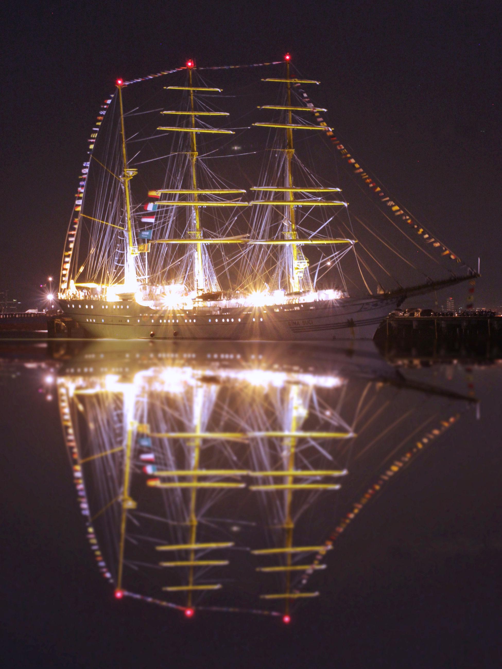 illuminated, night, no people, water, outdoors, sky, architecture, chain bridge, close-up