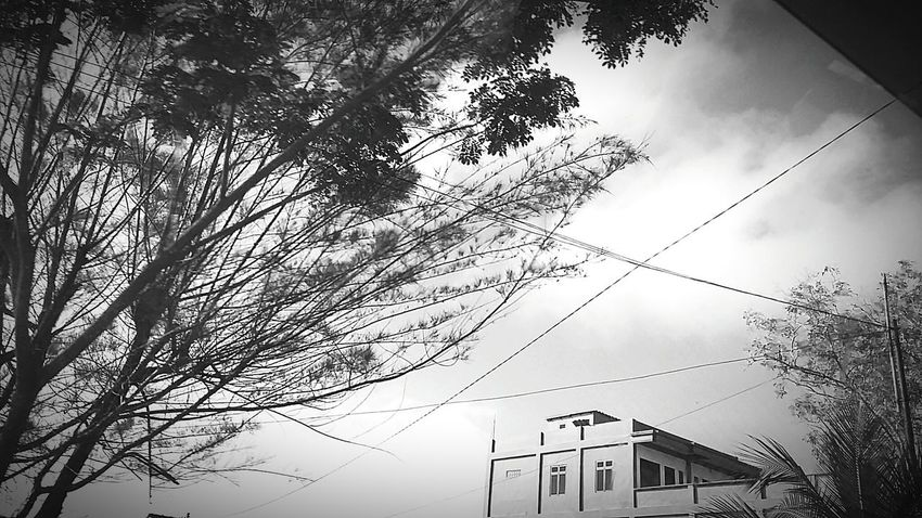 EyeEm Indonesia Blackandwhite Photography Streetphotography Architecture Nature Smart Simplicity Samboja, Kutai Kartanegara.