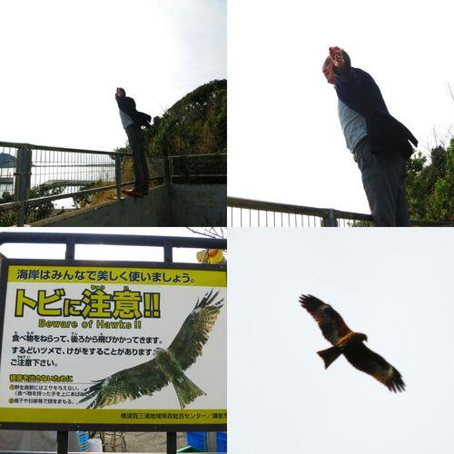 翼をください 小動神社