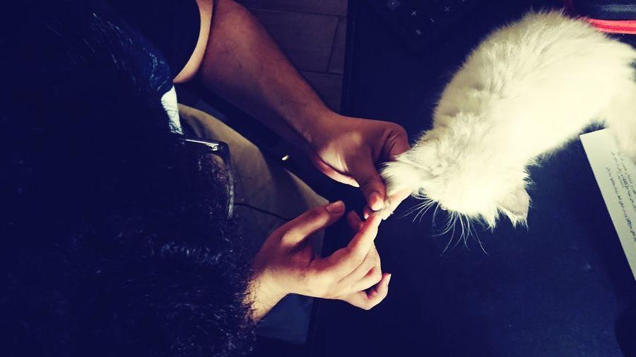 Cut Nails Cute