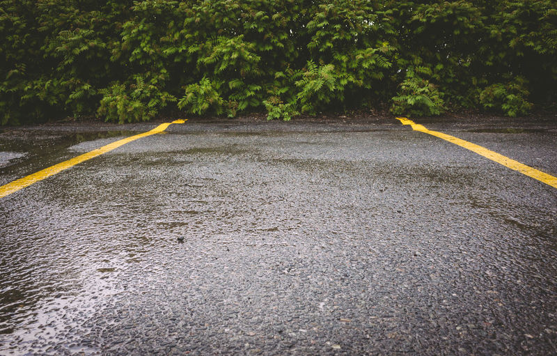 Low Angle View Parking Lot Yellow Lines Day No People Outdoors Road Surface Level The Way Forward Tree Yellow