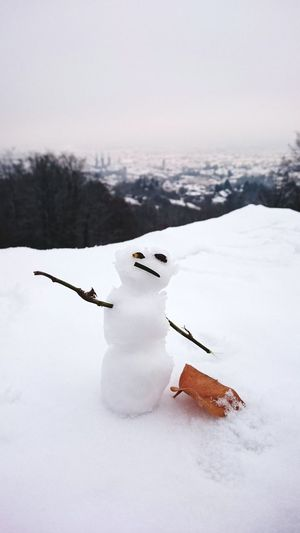 Winter Snow Cold Temperature Nature No People Scenics Landscape Day Outdoors Snowman