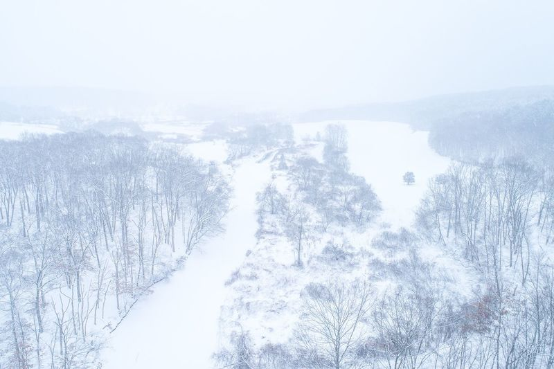 Frozen River Winter Snow Cold Temperature Nature Weather Scenics Beauty In Nature Tranquility Tree Mountain Outdoors No People Day Landscape Fog Forest Wilderness Area Sky Flying High