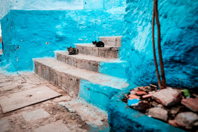 Close-up of an abandoned swimming pool