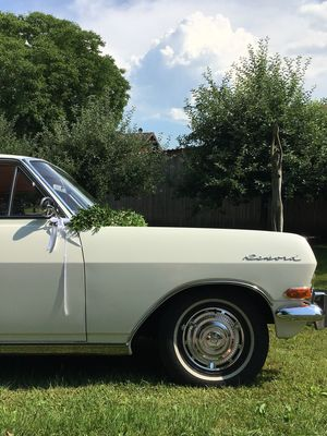Car Tree Transportation Land Vehicle Mode Of Transport Grass Green Color Day Stationary Growth Outdoors Plant No People Cloud - Sky Sky Nature Oldtimer Wedding Car Cabrio hochzeitsauto Hochzeit Bayern Hochzeitsauto Hochzeit