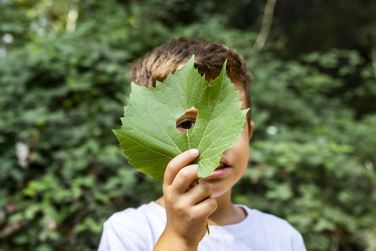 Kid looking through a leaf Casual Clothing Child Childhood Day Focus On Foreground Front View Green Color Hand Headshot Holding Leaf Leisure Activity Males  Men Nature Obscured Face One Person Outdoors Plant Plant Part Portrait