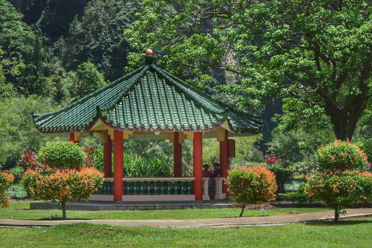 Tree Architecture Built Structure Growth Green Color Day Outdoors Plant Nature No People Grass Beauty In Nature Pagoda Building Exterior Flower Ipoh Malaysia Visit Ipoh