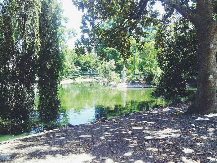Bordeaux Park Jardin Verdure
