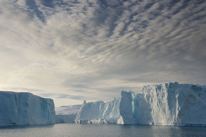 Arctic Ocean Greenland Icebergs Arctic Arctic Circle Beauty In Nature Cold Temperature Day Glacial Glacier Global Warming Greenland,ilulissat Ice Iceberg Illili Illulissat Nature No People Outdoors Scenery Sea Sky Water