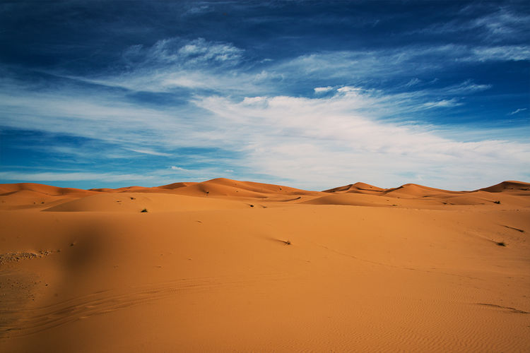 Morning in the dunes of the Sahara. Arid Climate Barren Beauty In Nature Blue Brown Cloud Cloud - Sky Desert Dunes Extreme Terrain Geology Horizon Over Land Landscape Mountain Nature Non-urban Scene Physical Geography Remote Sahara Sand Scenics Sky Tranquil Scene Tranquility Travel Destinations