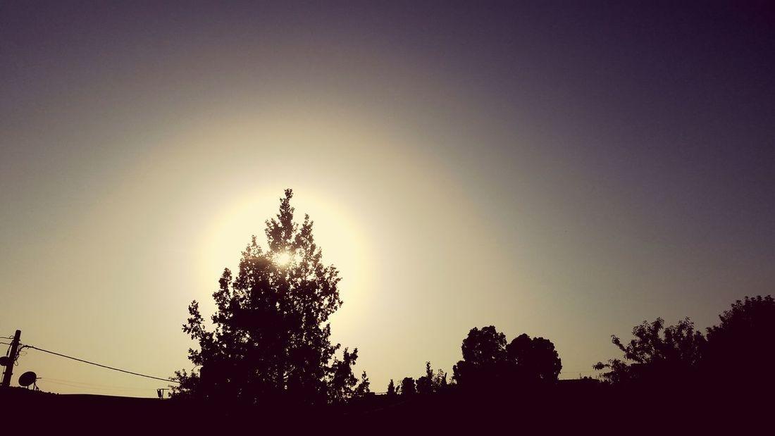 Light Nature Photograhy 🌞🌞🌞🌞☀☀☀😊😄😄😄😄 ☉☉☉ ☉🌞🌞☉ ☉☉ Nature Collection Nature Photography Beautiful Nature Nature Beautiful Beautiful ♥ EyeEm Selects Sunset Sun Rays Sun 😍😌😊 Amira💘