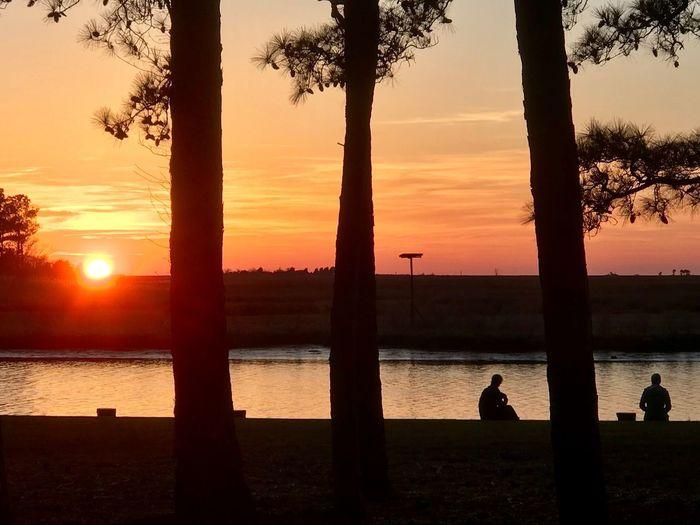 Sundown Sundown, Nightfall, Close Of Day, Twilight, Dusk, Evening Water Sky Silhouette Orange Color Scenics - Nature Beauty In Nature Nature Tranquility Tranquil Scene Sun Tree Outdoors Sunlight Plant Land Tree Trunk Beach Sea