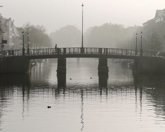 Misty morning Haarlem Mist Fog Foggy Morning Holland Netherlands Tinypeopleinbigplaces Smallfolkinlargeplaces City View