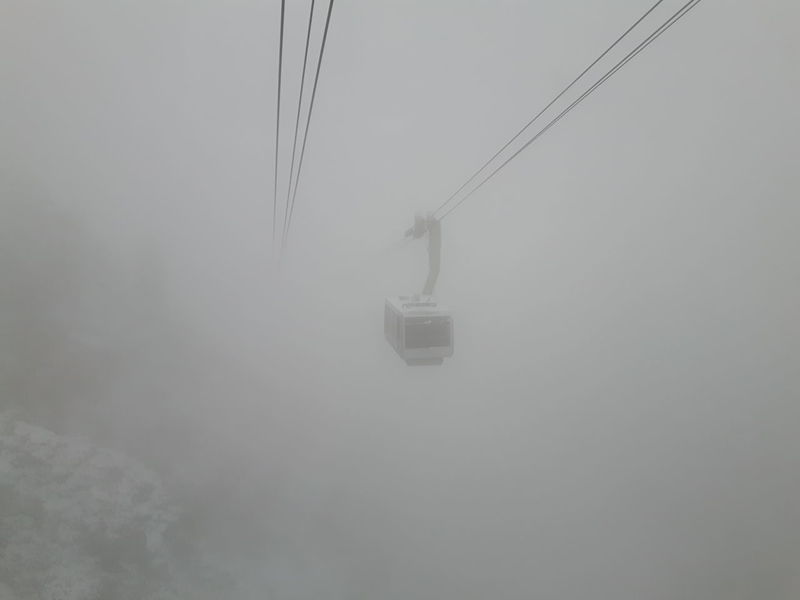 Monochrome Photography Weather Fog Cold Temperature Winter Foggy Snow Overhead Cable Car Season  Transportation Weather Fog Cold Temperature Winter Cable Foggy Tranquility Snow Overhead Cable Car Season  Tranquil Scene Transportation Electricity  Scenics Nature