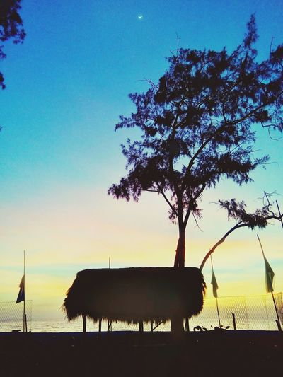 Tree Silhouette Sky Sunset Nature Outdoors Filipino Sunsetlover Travel Photography Backpacking Philippines Travel Destinations Water Nature Fun Adventure Leisure Activity Tourism Happiness