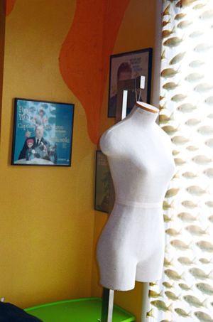 Fuji 800 Home Interior Film NATURA Classica Koduckgirl Dressform