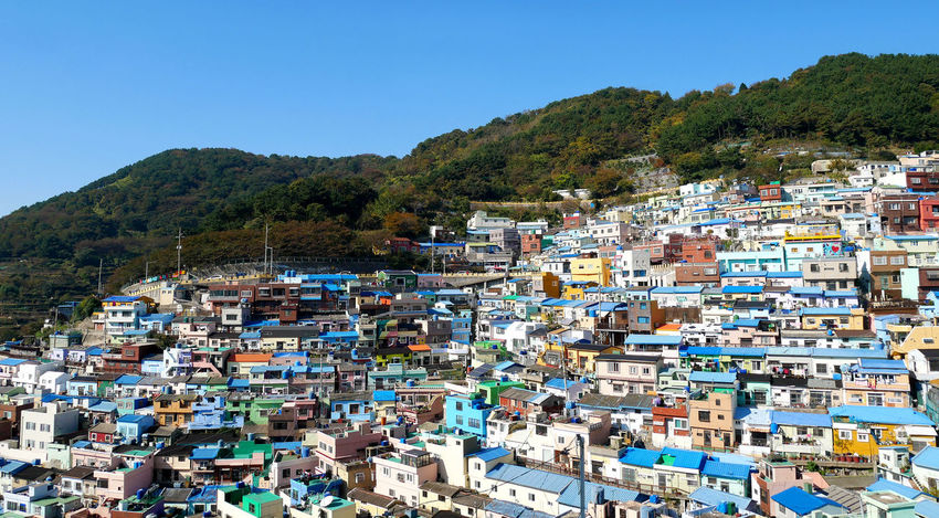 Gamcheon cultural village in Busan house on the mountain. The area is known for its brightly painted houses. Gamcheon Culture Village Korea Paint Architecture Blue Building Building Exterior Built Structure Busan Busancity City Cityscape Clear Sky Crowded Day Destination House Mountain Outdoors Residential District Sky