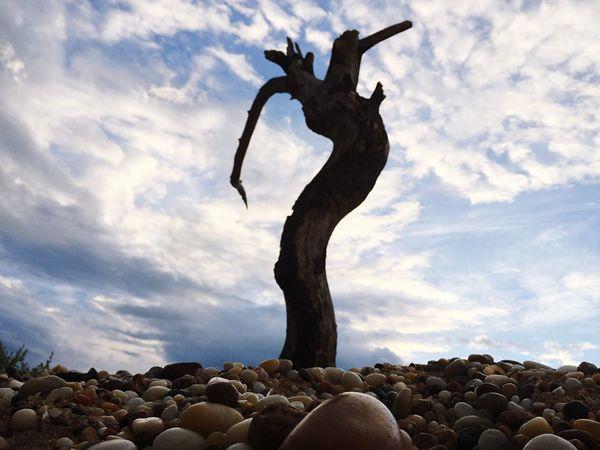 The dancing man Beach IPhoneography Longisland Minimalism Rocks Sand New York