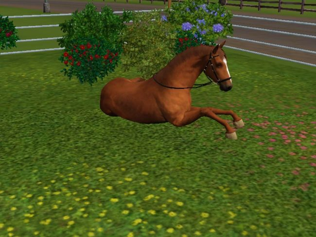 Sims3 Sims3pets Sims 3 paar meiner sims pferde Thesims3