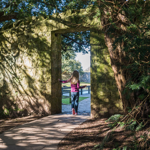Casual Clothing Doorway Full Length Leisure Activity Lifestyles Person Rear View Shadows Sunlight And Shadow The Way Forward Togetherness Transportation Tree Walking