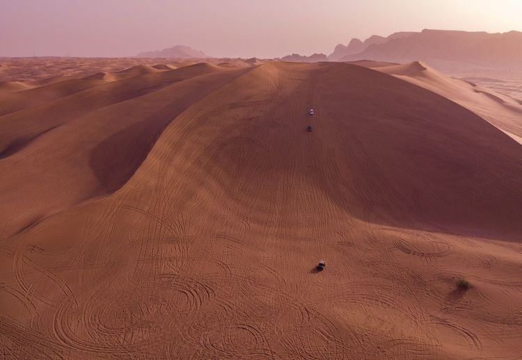 Sand Dune Desert Sand Landscape Arid Climate Nature Scenics Extreme Terrain Beauty In Nature Remote Tranquil Scene Off-road Vehicle Outdoors Brown Tranquility Day Physical Geography Tire Track No People Animal Themes