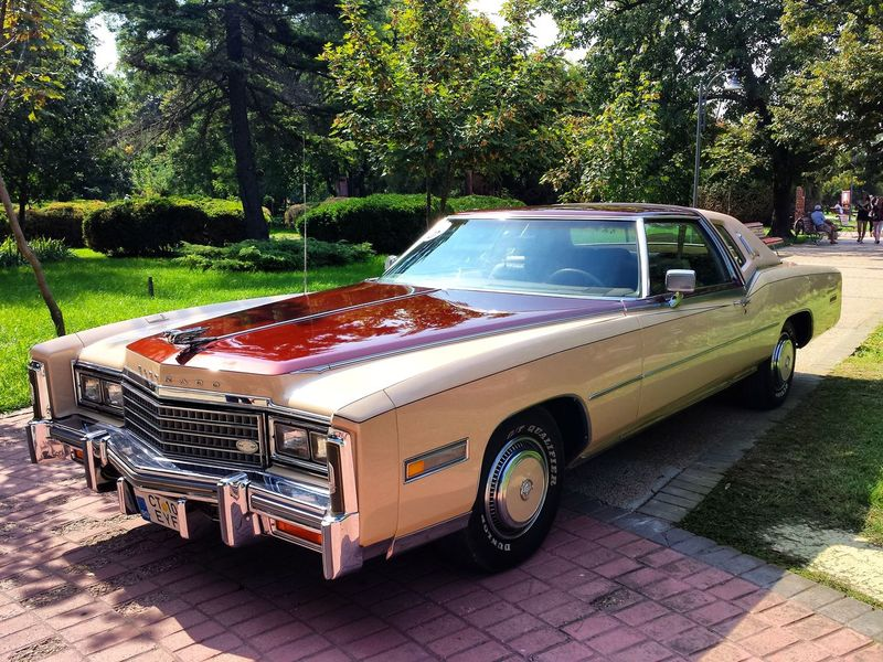 Cadillac Eldorado Tree Transportation Mode Of Transport Road Land Vehicle Cobblestone Car Front View Old-fashioned Day Outdoors Park Green Color Tranquility No People Retro Vintage Cadillac Cadillac Eldorado Eldorado Classic Luxurycar