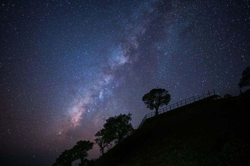 The Milky Way embraces the mountains. Nightphotography Peacful Universe Star - Space Night Astronomy Space Galaxy Sky Tree Space And Astronomy Silhouette Plant Milky Way Tranquil Scene Star Field No People Scenics - Nature Beauty In Nature Low Angle View Nature Star Tranquility