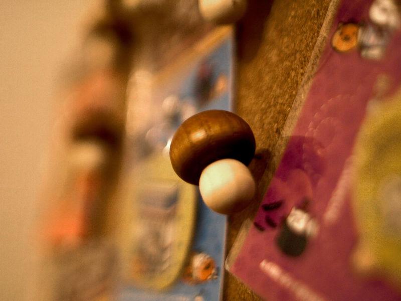 Corkboard Eyeemphotography Mushrooms Push Pins Stationery Taking Photos Thumbtacks