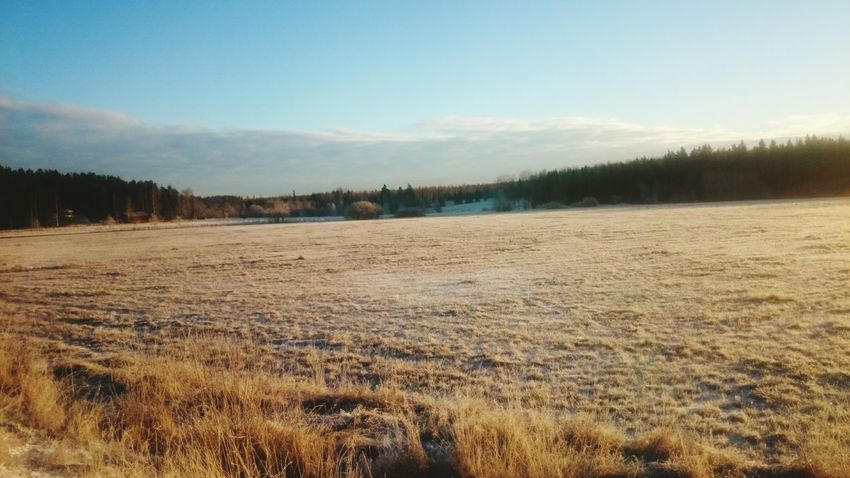 Good Morning Morningwalk Freezing Pakkanen Instanature Mäntsälä Suomi Finland