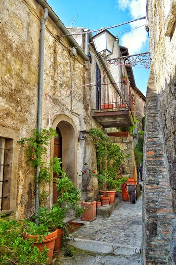 """""""Calcata Calling"""" - Calcata, Italia Cobblestone Streets Cobblestone No People Italy Italia Photobydperry Clouds And Sky Street Calcata Steps Sky Architecture Building Exterior Built Structure Ivy Steps And Staircases Stairway Window Box Stairs Staircase Vine"""