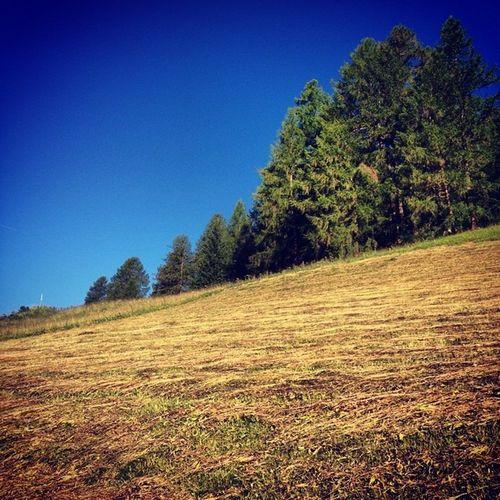 Il profumo di erba tagliata è inebriante..#corvara #alps #dolomiti #dolomites #lifelessordinary #lifeisbeautiful #italy #iphonography #sky #green #smellthextraordinary