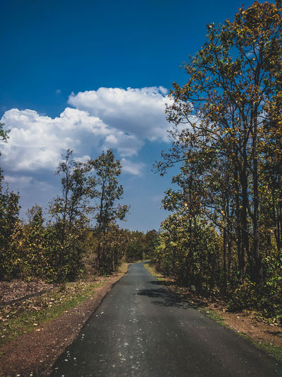 Road amidst trees against sky