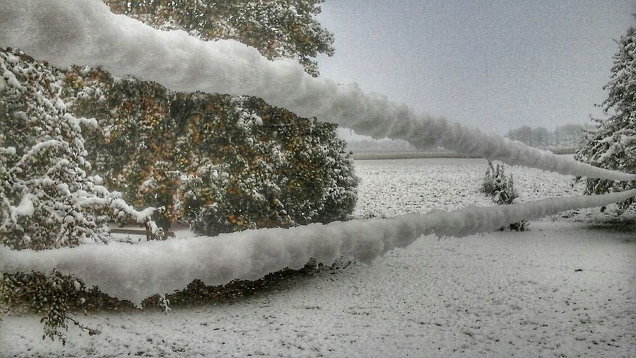 Good Morning south western Ontario october 18th Samsung Galaxy Tablet Snowing Early Snowfall My Backyard