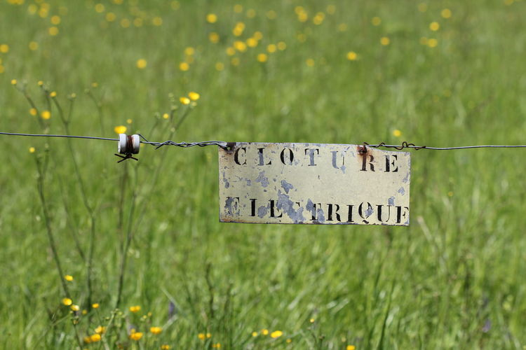 Beauty In Nature Close-up Day Electrique Field Focus On Foreground French Sign Grass Grassy Green Green Color Growth Landscape Nature No People Outdoors Plant Rural Scene Selective Focus Sign Tranquility Worn Out