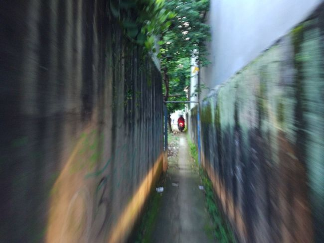 Narrow Path The Way Forward Tunnel Illuminated Outdoors Somewhere Over The Rainbow Miles Away Far Far Away... Somewhere In The World Street Light Somewhere Outhere Urban Geometry Urban Meets Rural Country Life JakartaStreet Nature And Geometry Street Photography Urban Meets Nature Line Meets Pattern