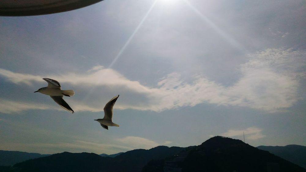 Sea And Sky Atami In Japan