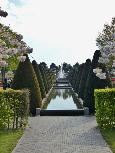 Footpath in formal garden