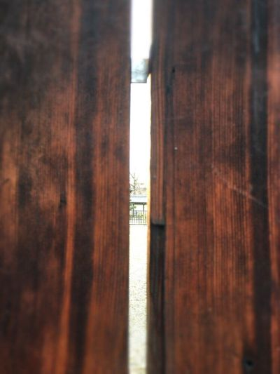 Kyoto,japan Kyoto Street Kyoto Door Kyoto Temple Door